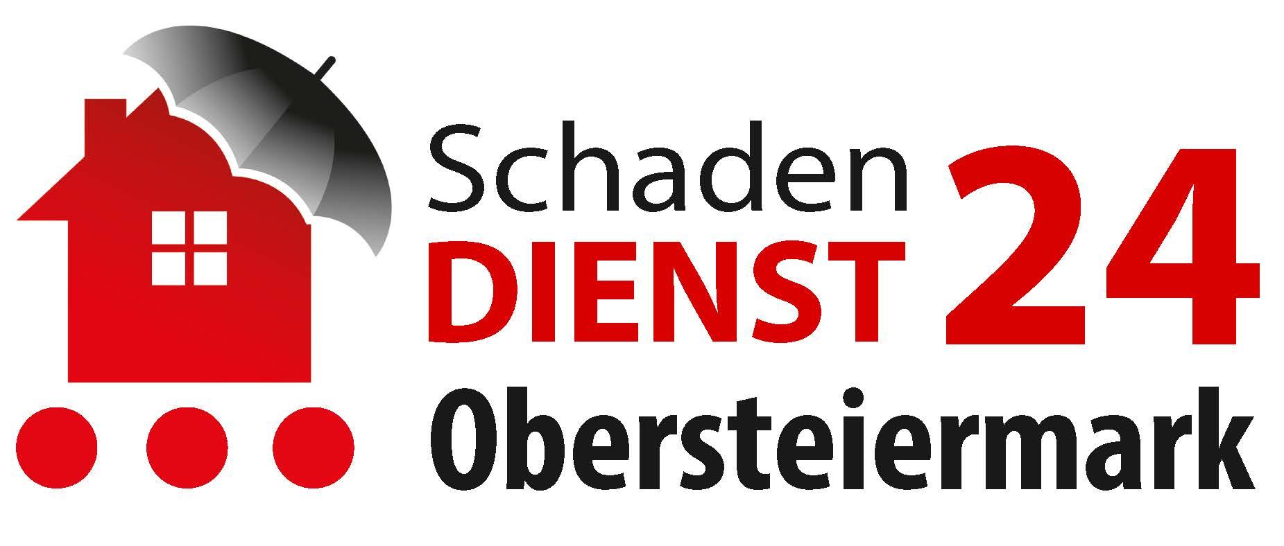 Schadendienst24 Obersteiermark Logo